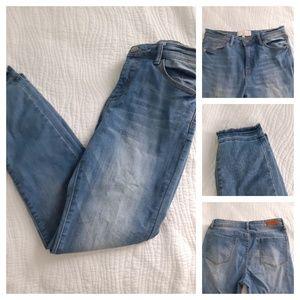 CAFE DENIM Medium Wash Jeans